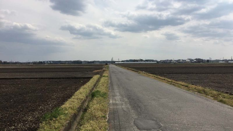 旧伊奈町田んぼ道